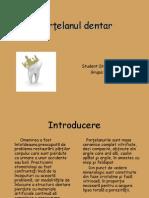 Portelanul Dentar
