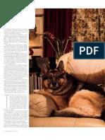 Revista2publico5.pdf