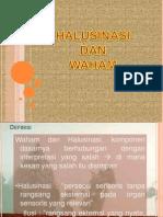 WAHAM & HALUSINASI
