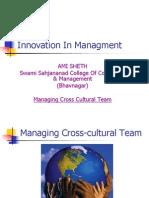 Cross cultural team