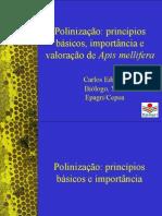 Polinizaç_o