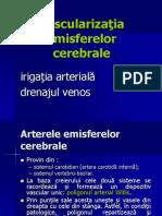 vascularizatia encefalului