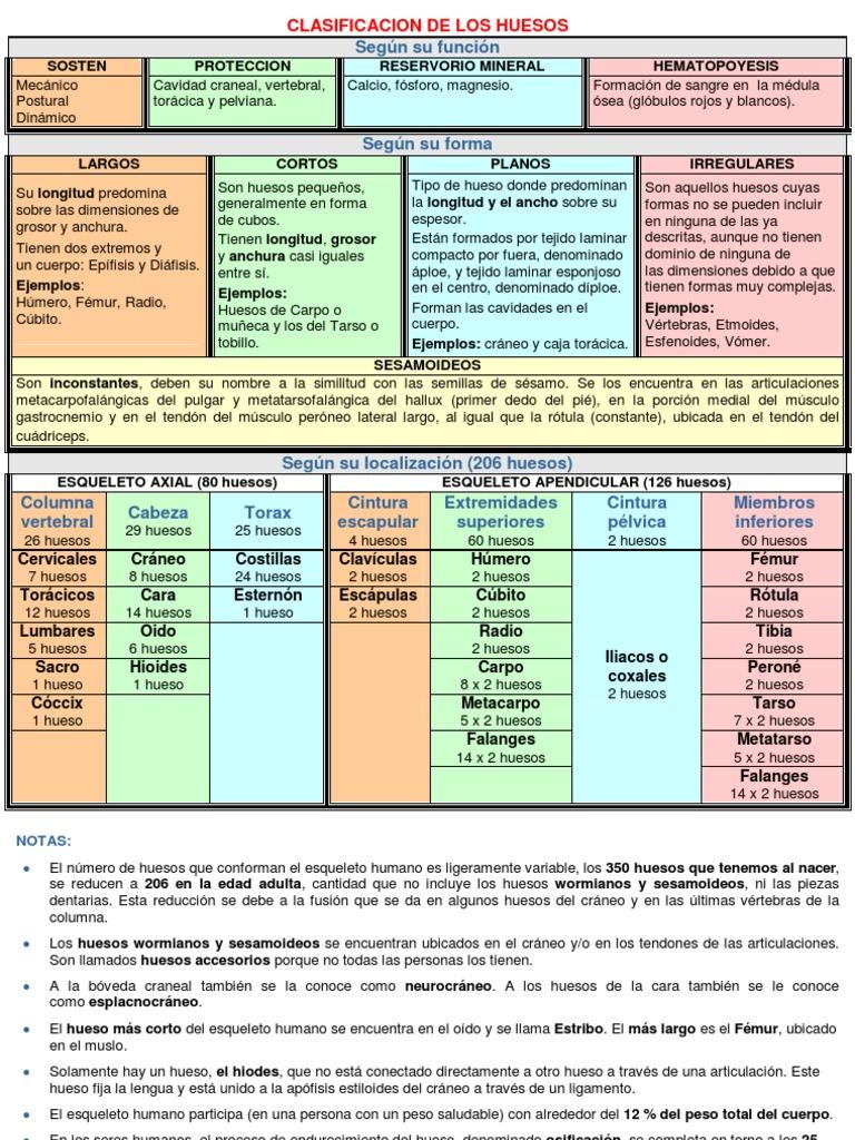Clasificacion de los for Tipos de viveros pdf