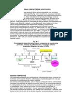 Historia de las resinas compuestas en odontologia. Realizado por Virginia García García