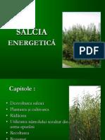 Salcia Energetica