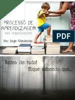 Processos de Aprndizagem Organizacional
