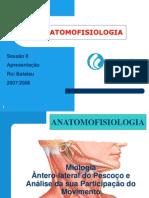 Miologia Antero-Lateral do Pescoço e Análise da sua Participação no Movimento.pdf