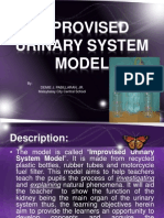 Improvised Urinary System