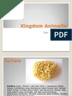 Power Point Porifera