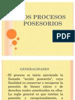 53205210-Procesos-posesorios