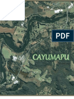 CAYUMAPU.docx
