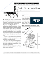 Basic Horse Nutrition