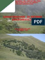 Caracterizacion de S.a. 2010 II