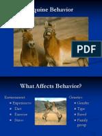 Behavior06