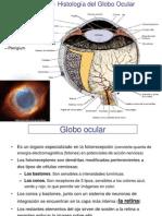 Tema 24.Globo Ocular.11-12