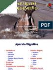 Aparato Digestivo I - Copia