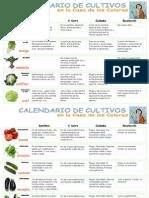 Calendario de Siembras Por Cultivos