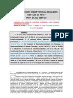 Novo Processo Constitucional Brasileiro O Estado Da Arte