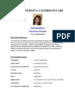 Curiculum Vitae ORI[1][1][1]