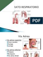 Aparato Respiratorio Y Mascarilla Laringea-Anestesiología