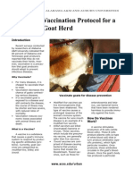 Vaccinating Goats