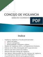 Concejo de Vigilancia