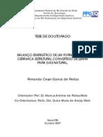 BALANÇO ENERGETICO DE UM FORNO TUNEL DE CERAMICA CONVERTIDO DE LENHA PARA GAS NATURAL