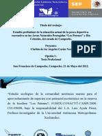 Presentacion Tesis Cinthia Cazan