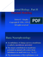 basic neurophysiology