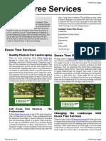 Essex Tree Services