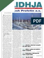 Gazeta LIDHJA nr.10