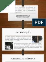 Emergência e crescimento de plântulas de bacabi (