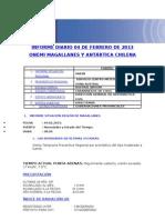 Informe Diario Onemi Magallanes 04.02.2013