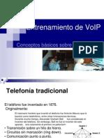 Conceptos Basicos de La Telefonia IP