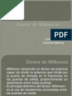 Divisor de Wilkinson