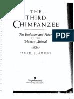 third chimanzee