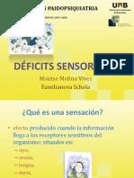 Modulo-8 Deficit Sensorial[1]