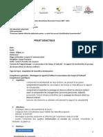 Proiecte Lectie Franceza