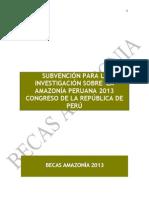 Bases-Becas-Amazonía-2013