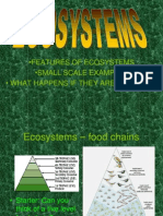 Small Changes in Ecosystems