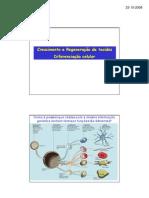 Biogeo Diferenciacao Celular