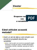 Analiza cluster