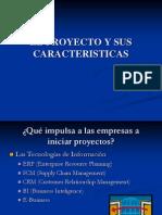 Proyecto y sus caracteristica