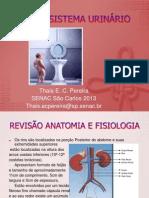 anatomia e patologias sistema urinario THAÍS