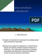 mtodosnaturalesdedepuracin-101115173513-phpapp01