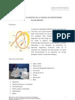 Colocación y cuidados de la sonda de Sengstaken-Blakemore. V.1.1