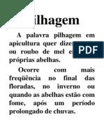 04-PILHAGEM