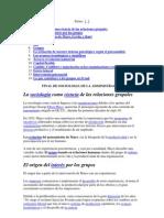 sociologia en la administracion.docx