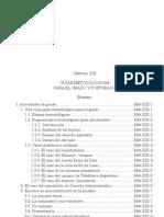 Guías metodológicas para grado y posgrado