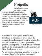 08-Própolis